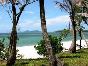 Roatan Island Beauty
