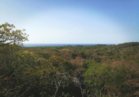 View of the blues of the Caribbean Sea and the lush vegetation.